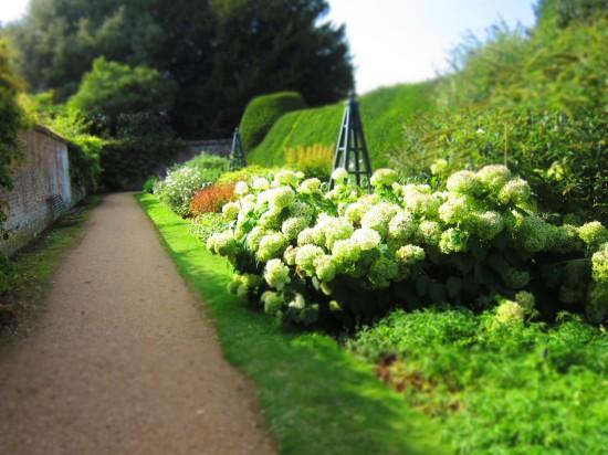 9 - secret garden